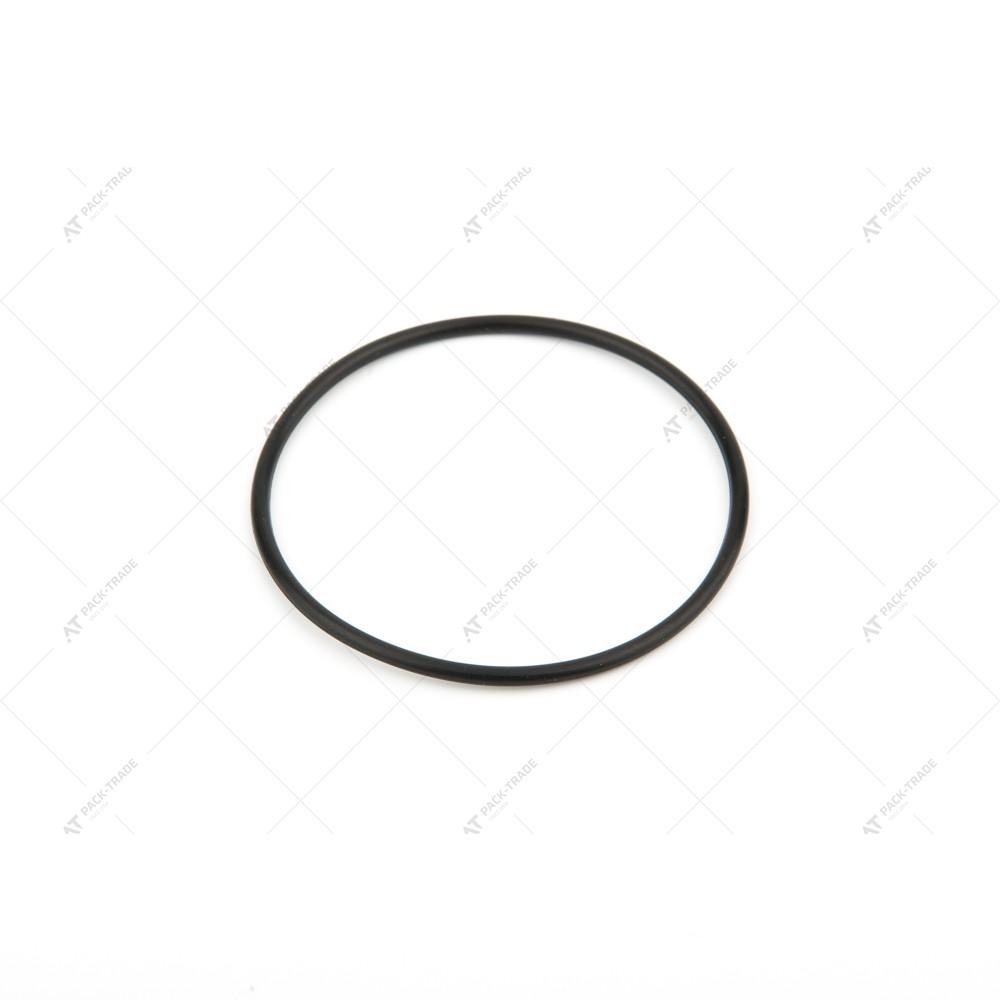 Уплотнительное кольцо 828/00231